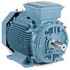 Inverter/Vector AC Motors -- EMM22454-PP