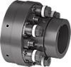 GERWAH™ Design with Flange-hub and Keyway-hub -- GWS 5420