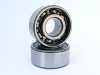 W200/W300 Series single row, wide type bearings -- W204