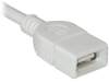 Cables To Go 46036 USB Extension Cable - 6.6 ft -- 46036