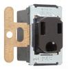 Duplex/Single Receptacle -- 1332 - Image