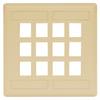 Datacommunication Face Plate -- IFP212EI - Image