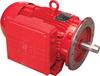 3 HP Farm Duty Motor -- 8370413