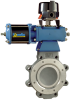 DeZURIK -- BHP High Performance Butterfly Valve Series