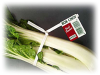 Bok Choy Twist-Ems Label-Ties