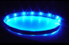 "LDS12BL.  Blue 12 "" 12V LED Strip.  View Enlarged Picture."