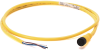 889 DC Micro Cable -- 889D-R5ACDM-1 -- View Larger Image