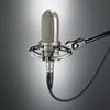 Bidirectional Ribbon Microphone -- AT4080