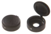 Screw Cover,Hinged,Plastic,1/4 In,Pk 10 -- 6UYW3