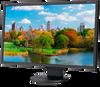 """22"""" LED-Backlit Desktop Monitor w/ Adjustable Stand -- EA223WM-BK -- View Larger Image"""