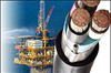 Offshore & Onshore RIG Cable