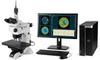 BW-Series: White Light Interferometric Microscope System - Image