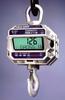Crane Scales -- 4300