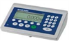 ICS465 Weighing Terminal