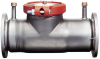 Stainless Steel Detector Check Valves -- Series 1000SS