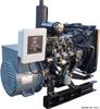 Isuzu Powered 12.5 kW Diesel Generator
