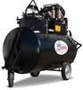 Propane Sunp Pump -- SP50-500TW