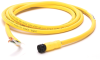 889 AC Micro Cable -- 889R-F3WERM-20 -Image