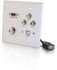 Double Gang HD15 + 3.5mm + RCA A/V + USB Wall Plate - Brushed Aluminum -- 2225-40545-ADT - Image