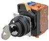 Keylock Switches -- A22NK-3BB-01DA-G102-ND - Image