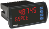 1/8 DIN Process Panel Meter -- DP6000 Series