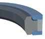 Capped T-Seals -- CTS -- View Larger Image
