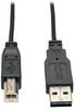 Universal Reversible USB 2.0 Super Slim Cable (Reversible A to B M/M), 6-ft. -- UR022-006-SLIM - Image