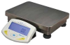 Bench Check Density Balance Scale Weigh 10000g -- 08R4537 - Image