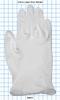 Gloves -- 89021