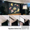 Ceiling-Recessed Electric Projection Screen -- Signature/Series E