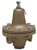 Steam Pressure Regulator -- Series 252A