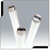 Ultra 8™ T8 Linear Fluorescent Lamp -- 3000485