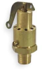 Safety Valve,0.5 In,MNPT,Brass -- 3ETU2