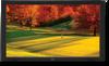 "46"" Business-Grade Large-Screen Display w/ AV Inputs & Digital Tuner -- S461-AVT -- View Larger Image"