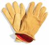 Memphis Deerskin Leather Gloves -- GLV405 -Image