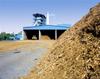 Turbines fo Biomass Plants