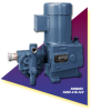 Neptune High Viscosity Metering Pumps