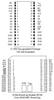 3.3V 1024k Nonvolatile SRAM -- DS1245W - Image