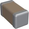 Ceramic Capacitors -- 1206Y2500563KDR-ND -Image