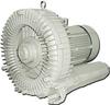 Single Stage Regenerative Blowers -- DG900-37