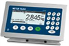 ICS439 Weighing Terminal
