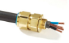 CW Cable Gland - Image