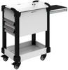 MultiTek Cart 2 Drawer(s) -- RV-GB37S2F106L3B -Image
