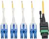 MTP/MPO (APC) to 8xLC (UPC) Singlemode Breakout Patch Cable, 40/100 GbE, QSFP+ 40GBASE-PLR4, Plenum, Yellow, 3 m (10 ft.) -- N390-03M-8LC-AP