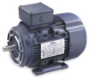 Metric Motor,3-Phase,IP55,1 HP,0.75 kW -- 2NE26