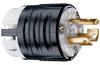 Pass & Seymour® -- NEMA L515 Plug - PSL515P