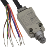 Snap Action, Limit Switches -- Z6026-ND