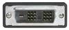 DVI-D Single Link LSZH Cable Male/Male w/ Ferrites, 5.0 ft -- CTLDVIMMLZ-5 -- View Larger Image