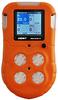 RECON/4 - Multi-Gas Portable Detector -- P/N 02604-004