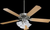 7752511656 Fans-Ceiling Fans -- 304617